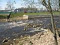 Охтинская плотина, водослив02.jpg
