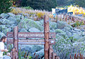 Природен Парк Витоша MG 1800.jpg