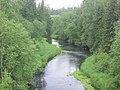 Река Малая Коша (The Small Kosha river) - panoramio.jpg