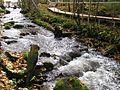 Река Мелдерупите, Иерики 2011 - panoramio (1).jpg