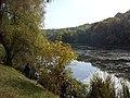Рибаки в Голосіївському парку.jpg