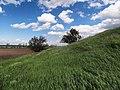 Северный склон кургана - panoramio.jpg