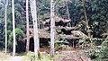 Чжанцзяцзе - panoramio (2).jpg
