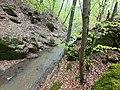 Կողբ գետը Զիկատար անտառում.jpg