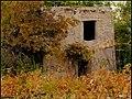 دیدنیهای پاییز مراغه - panoramio (15).jpg