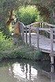 محمية الأزرق المائية - panoramio.jpg