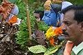 കുമ്മാട്ടി Kummattikali 2011 DSC 2735.JPG