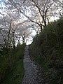 うつぶな公園 - panoramio (2).jpg