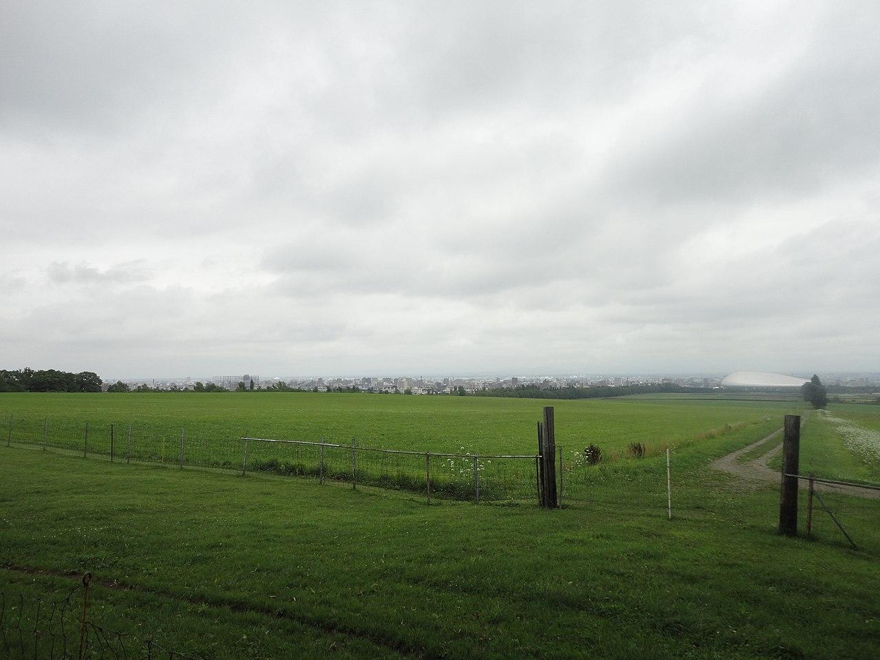 羊 ヶ 丘 展望 台