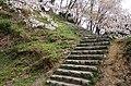 吉野山にて 老人憩の広場 2014.4.12 - panoramio (1).jpg