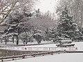 山东农业大学机械与电子工程学院 - panoramio - ncf007 (2).jpg