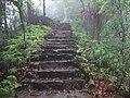贵州-梵净山-3000梯登山路景 - panoramio.jpg