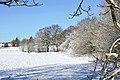 -2021-01-25 Snow on Colton Hills near Penn, Wolverhampton.jpg