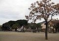 035 Parc Municipal d'Olesa de Montserrat.jpg