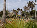 07600 Ses Cadenes, Illes Balears, Spain - panoramio (18).jpg
