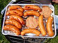08269 barbeque on the bank at San river, Sanok.jpg