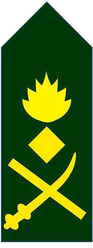 Lieutenant general - Image: 09.lt gen Bd