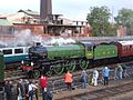 1306 Mayflower at Barrowhill.jpg