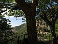137 Sant Miquel del Fai, la vall del Tenes des de la plaça del Repòs.JPG