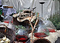 14-05-24 Drachenschädel 01.jpg