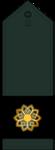 14- Sargord-IRGC.png