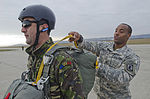 173rd Airborne continues allied training missions in Romania 141114-A-IK450-790.jpg