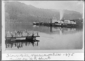 Ngaruawahia - 1875 punt, with Waikato Steam Navigation Company flour mill, paddle steamers Waipa and Bluenose and Hakarimata Range in the background
