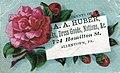 1880 - A A Huber - Trade Card - Allentown PA.jpg