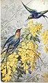 1908-fiori-e-uccelli-01.jpg