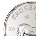 1 oz Silver Krugerrand 2017 detail.png