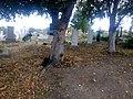 20.09.2015 - panoramio (3).jpg