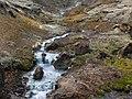 2006-05-22-114253 Iceland Hveragerði.jpg