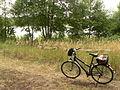 2008-08-09-werbellinsee-013.jpg