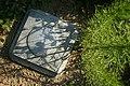 2008-08-18 Horizontal control marker in Duke Forest.jpg