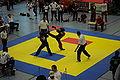 2010-02-20-kickboxen-by-RalfR-14.jpg