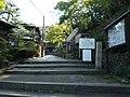 20131014 07 Kyoto - Higashiyama - Maruyama Park (10512568154).jpg