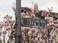 20140324Holzweg.jpg