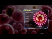 File:20200130 - Scientific Animations - Medical Animation Coronavirus Structure.webm