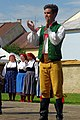 22.7.17 Jindrichuv Hradec and Folk Dance 195 (36062547076).jpg