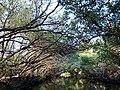 555594031Taijiang National Park1.jpg