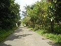 9759Poblacion III Del Carmen, Alaminos, Road 03.jpg