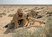 AI AWSM .338 Lap. Mag. Dutch ISAF sniper team