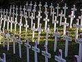ANZAC Day installation, New Plymouth.jpg