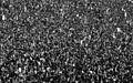 A Rolling Stones crowd - 1976 -Knebworth House B&W.jpg
