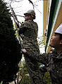 A U.S. Sailor, left, trims a tree while a Republic of Korea sailor steadies the ladder April 18, 2013, at the Dekpyeong Foundation in Pohang, North Gyeongsang Province, South Korea 130418-A-IF479-4295.jpg