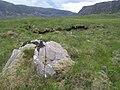 A boulder - geograph.org.uk - 483557.jpg