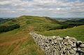 A drystane dyke on Sunnyside Hill - geograph.org.uk - 1401644.jpg