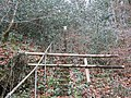 A flight of steps up to the reservoir for Morwellham hydroelectric power station - geograph.org.uk - 1098958.jpg