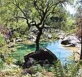 A lagoa verde.jpg
