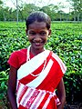 A tea tribe girl.jpg